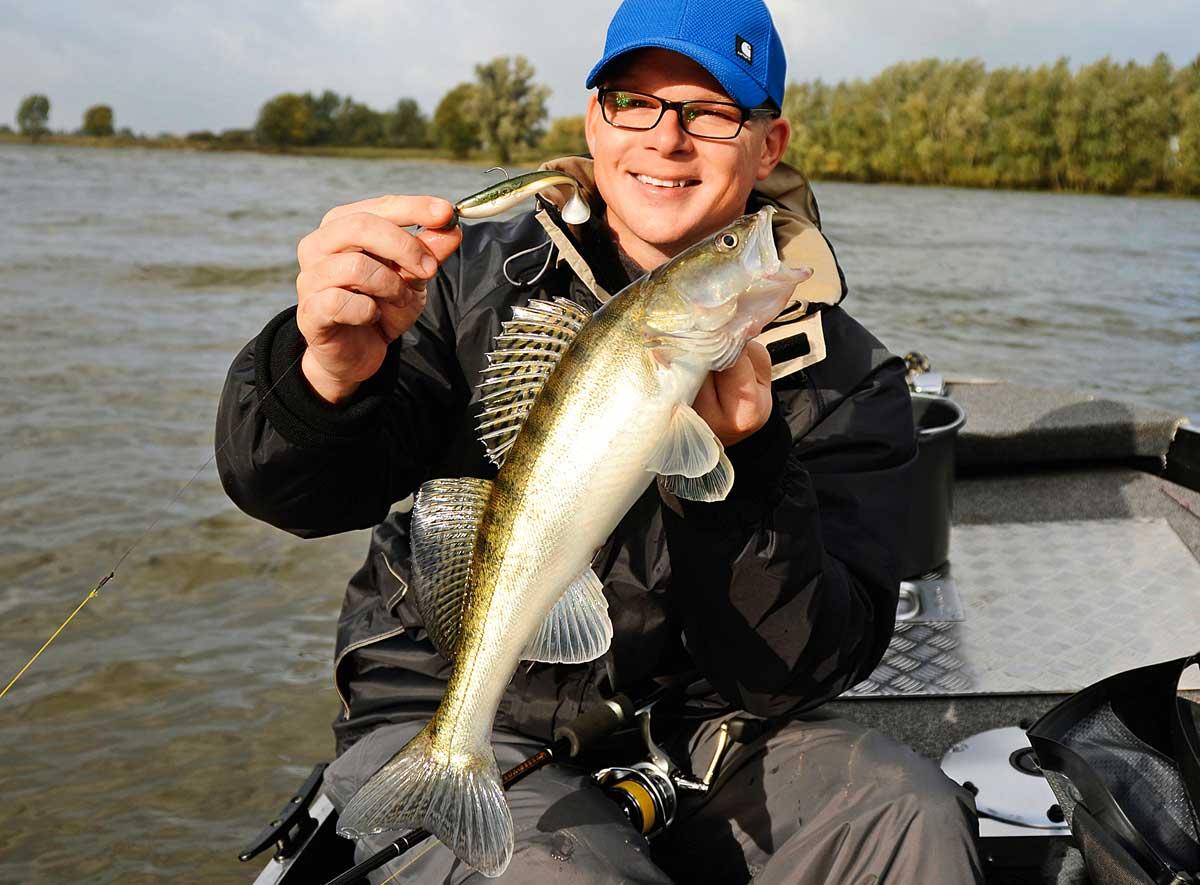 Zielfisch: Markus Heine mit der Hauptbeute der handlangen Shads, einem Zander.