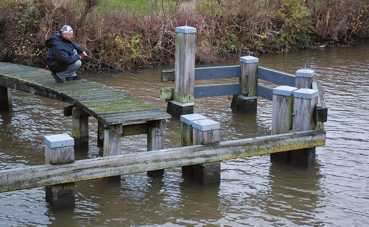 Hot Spot: Stege gehören an den holländischen Poldern zu den besten Stellen.