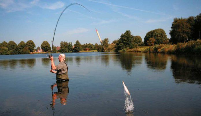 Abgekürzt: Matze watet dem Angelplatz entgegen, wenn er den Köderfisch weit draußen anbieten will. Dann heißt es: Feuer frei!