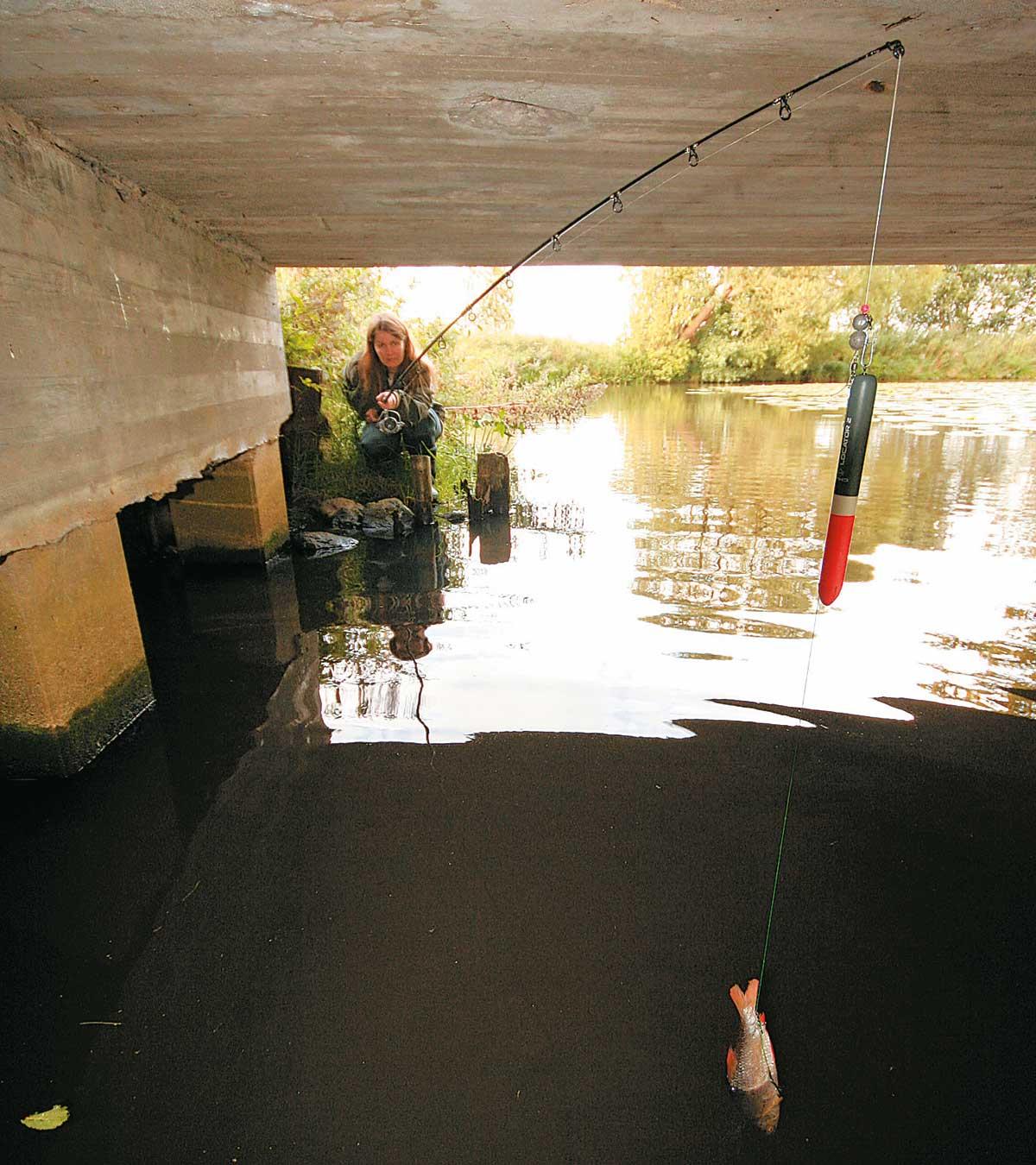 Matzes Frau Moni zeigt, wie es geht: Mit einer langen Rute serviert sie den Köderfisch unter einer niedrigen Brücke.