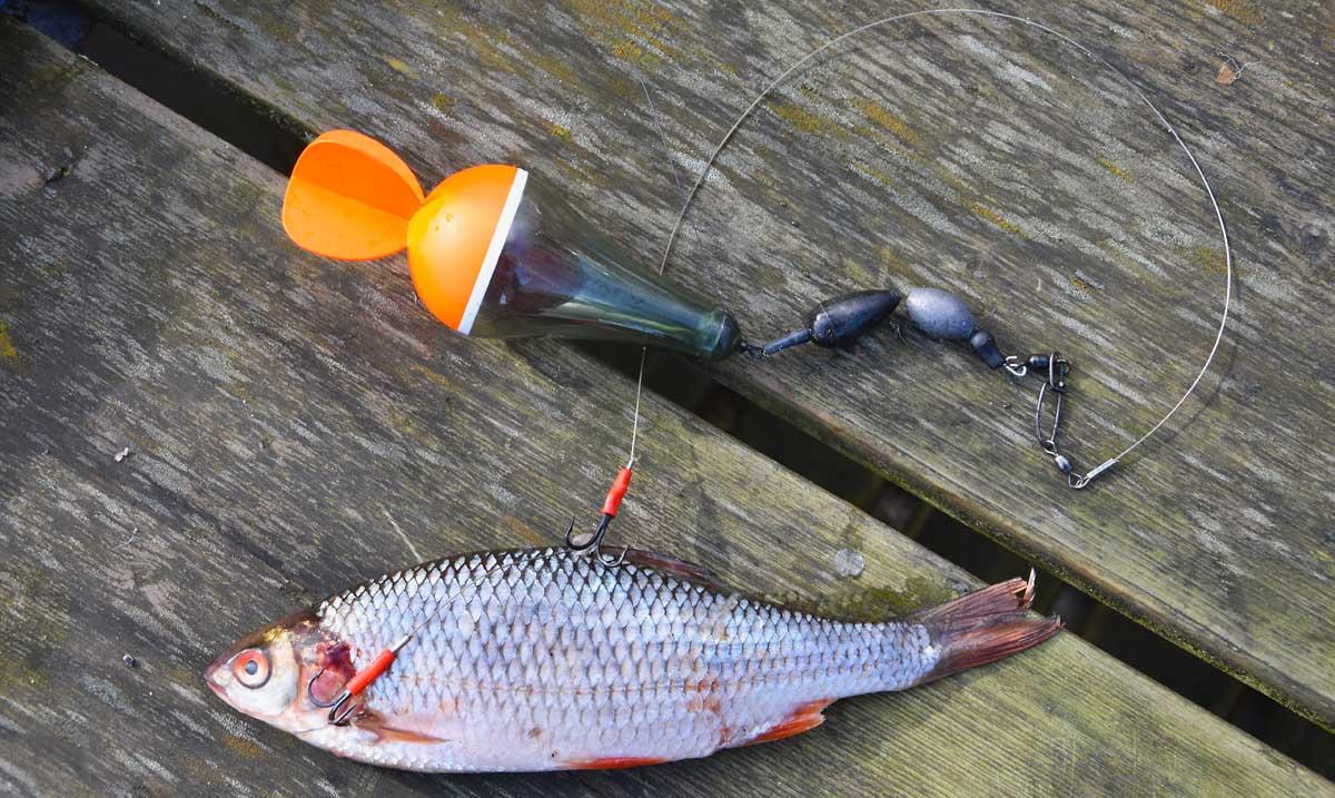 Hechtfischen mit dem ursprünglichsten aller Köder ist durchaus anspruchsvoll.