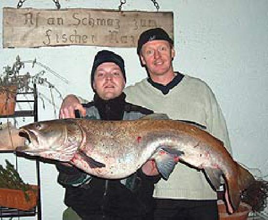 Fischerstüberl Blaibach